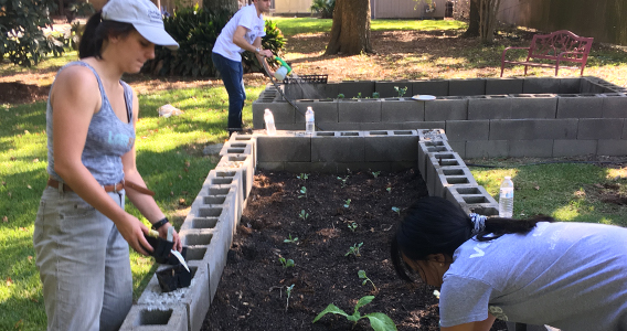 Cultivating Relationships with Community + Long-term Service = Project 225